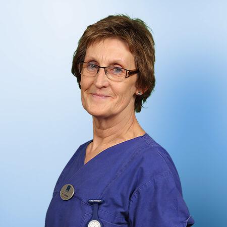 Dr Kapp Uelzen